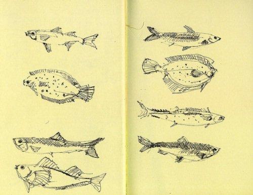 полезная рыба при повышенном холестерине